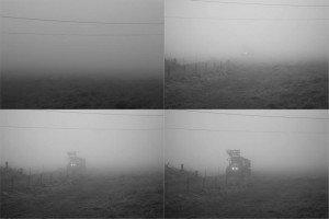 Bernard G through the fog.