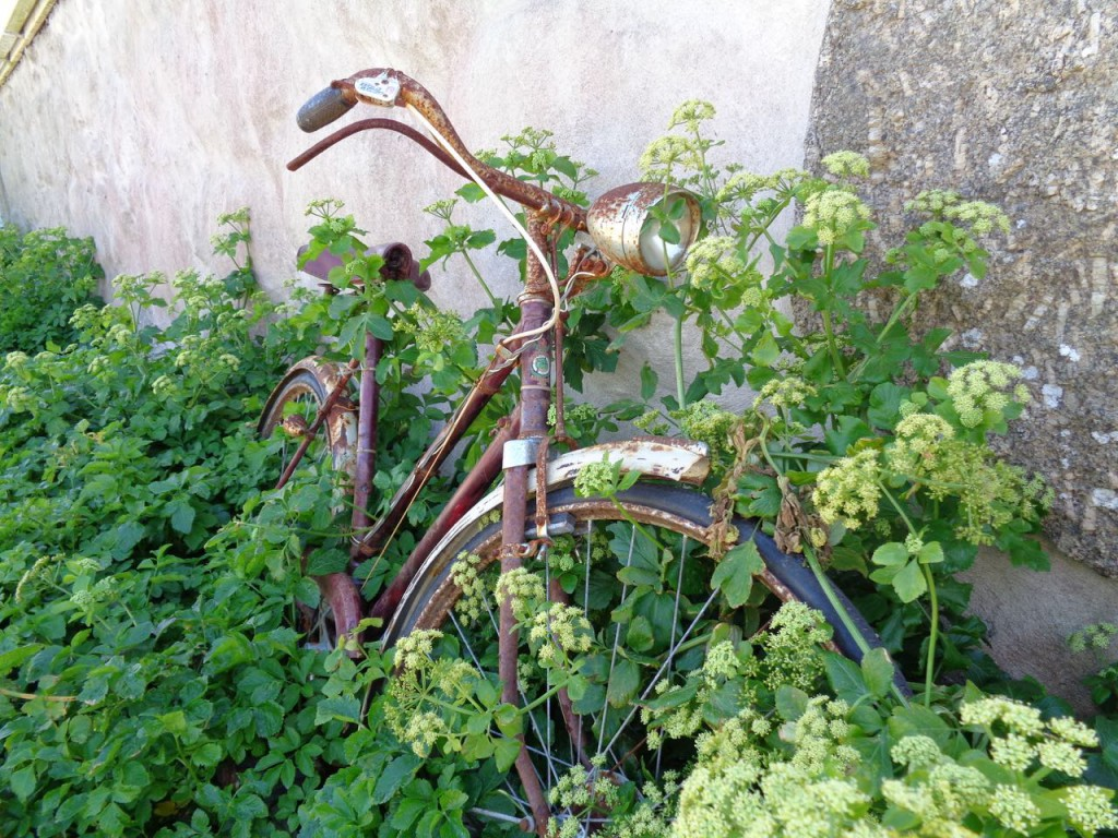 Abandoned, but still lovely. Bicycle at Trevilly.