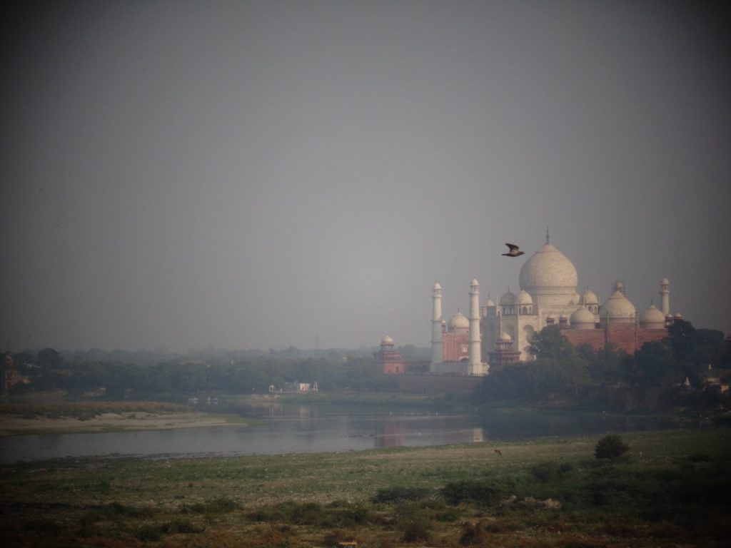 The Taj Mahal from the Red Fort, Agra.