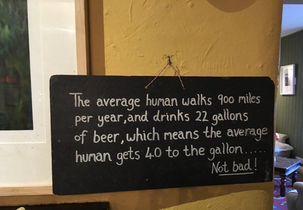 Wisdom at The Gurnard's...