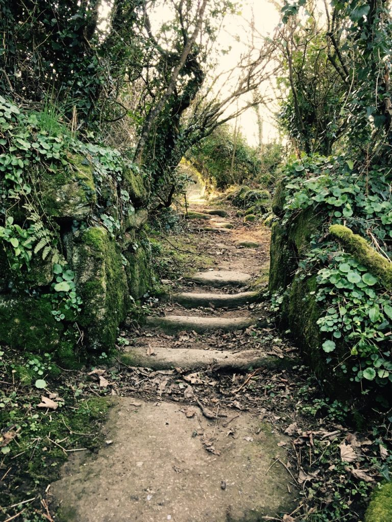 The old church path towards Zennor.